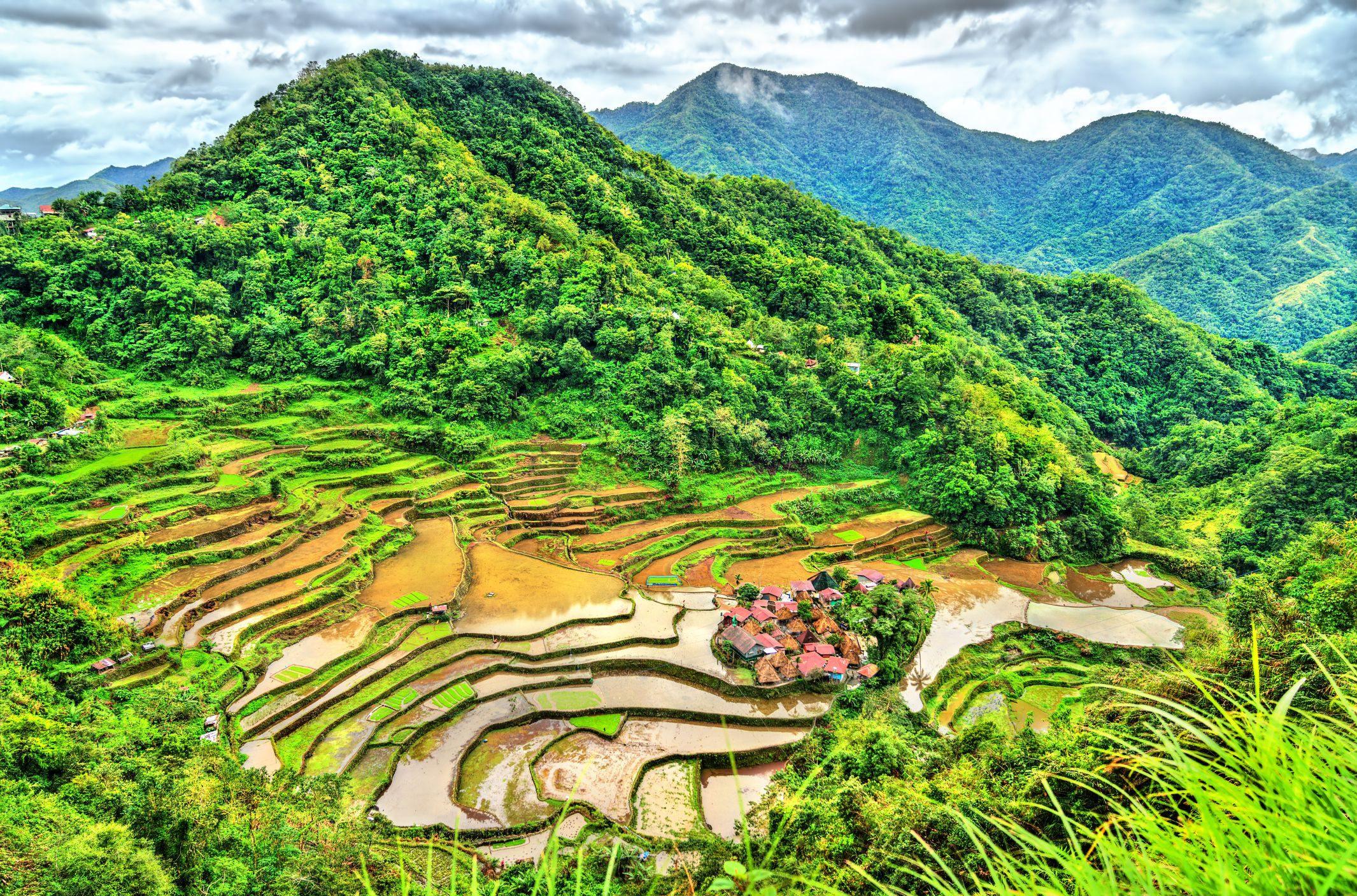 rýžové terasy na Filipínách