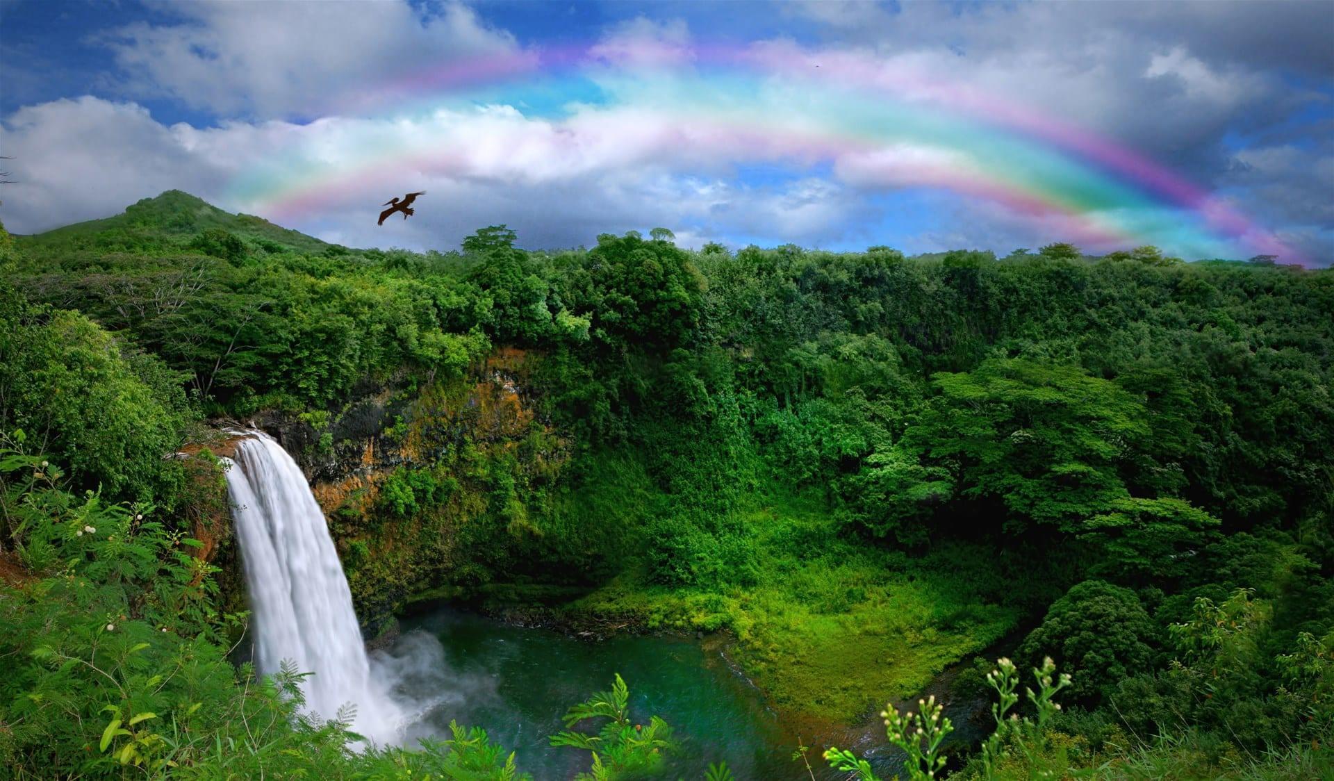 havai + vodopad